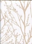 Azmaara Wallpaper Autumn 2671-22443 By Kenneth James For Brewster Fine Decor